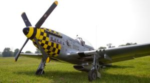 CARF P51-Mustang 2.5m  Silver