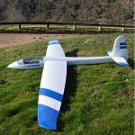 Glider_it Stingray ARF 2 colour